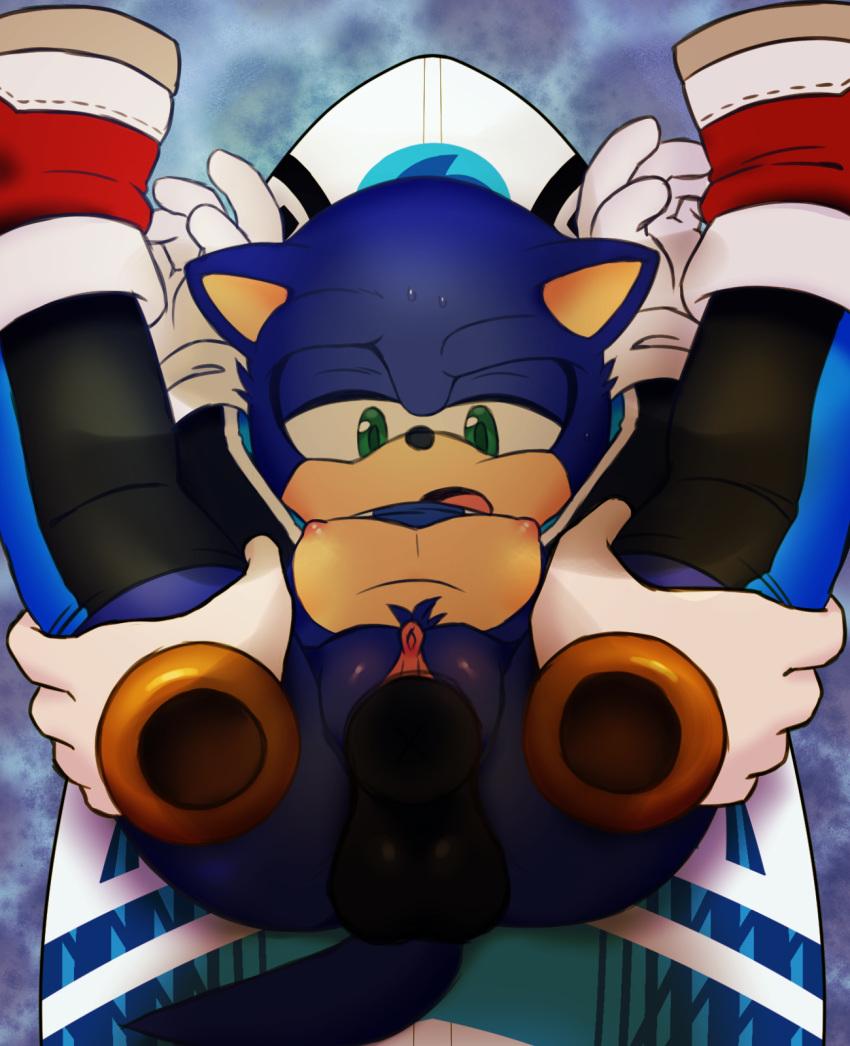the sonic werehog shadow vs the werehog Ranma 1/2 crossover