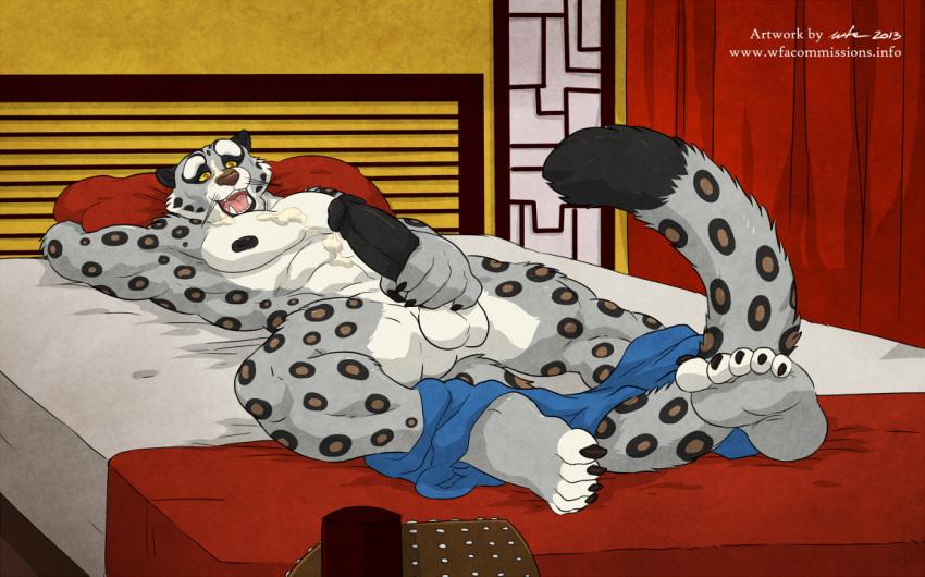 kai fu general panda kung To love-ru nudity